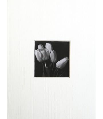 https://www.livinart.it/1071-thickbox_default/ritaglio-10-tulipani.jpg