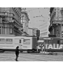 Un tram chiamato ...