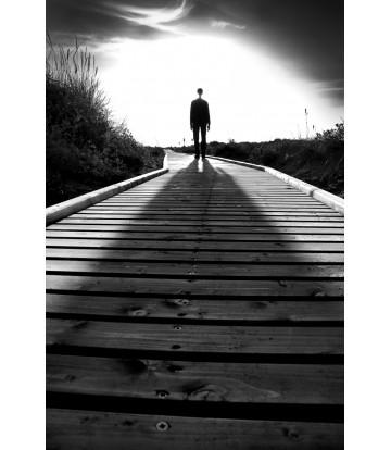 https://www.livinart.it/1480-thickbox_default/shadow-of-the-evening.jpg