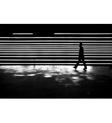 Street Stripes - New York