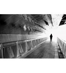 Toward the Light - Chicago