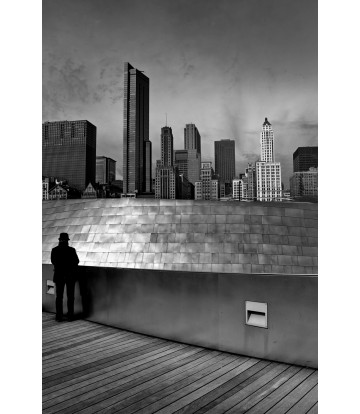 https://www.livinart.it/1536-thickbox_default/metropolis-chicago.jpg