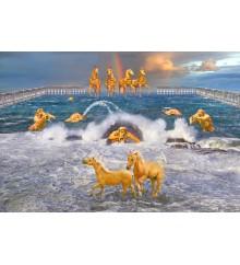 Cavalloni