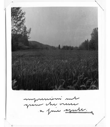 https://www.livinart.it/1915-thickbox_default/1-serie-impressioni-aprile.jpg