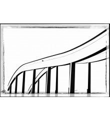 Forma e Materia 12