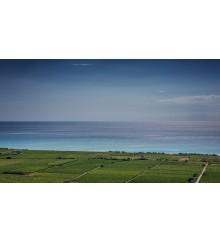 1. Progetto La Linea del Mare