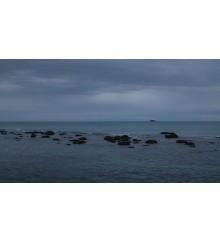 La Linea del Mare 11