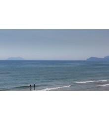 La Linea del Mare con trasferelli 9