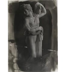 Statuina