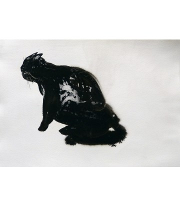 http://www.livinart.it/675-thickbox_default/black-cat-3.jpg