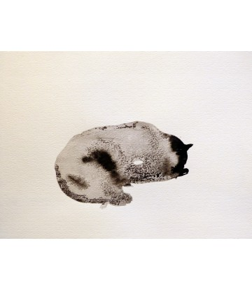 http://www.livinart.it/693-thickbox_default/sleeping-cat.jpg