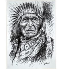 Native American 23
