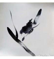 2. Serie 'Birds'