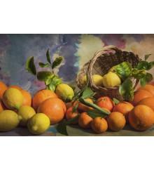 Cesto di frutta/3